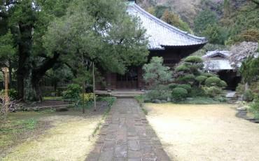 temple,shrine,history,historical,kamakura,culture,tokyo,kanagawa,japan