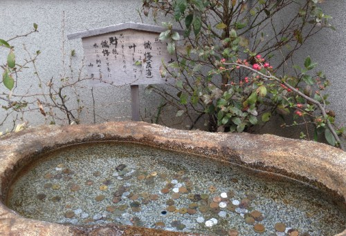 Yakuoji Temple fountain, a temple by Kamegayatsuzaka Pass, Kamakura
