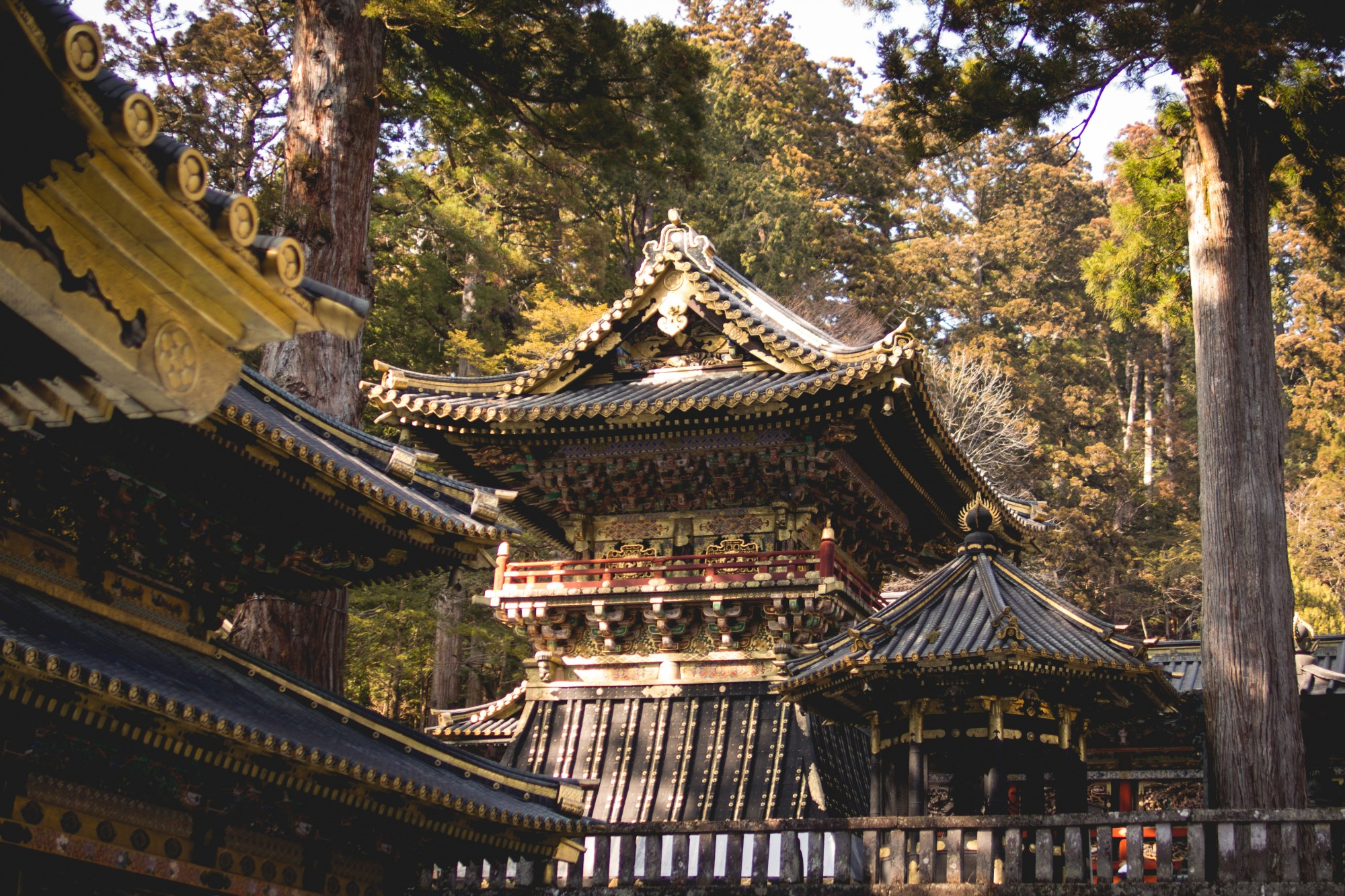 Nikko Toshogu – Japan's Most Lavish Shrine and Tokugawa Ieyasu's Final Rest -...