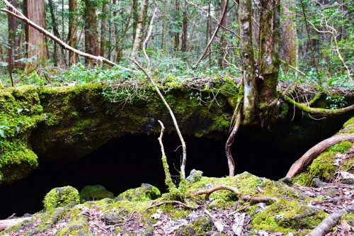 A big cave below ground level named Shelter from the Rain, Aokigahara