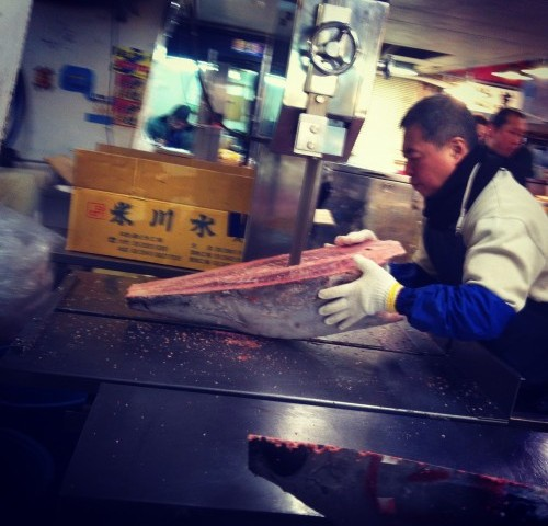 Tuna auction at Tsukiji fish market