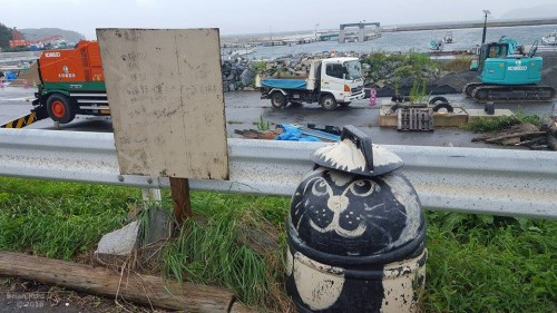 From the moment you get of the ferry, cats are there to welcome you in Tashirojima Japan