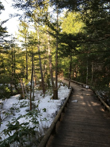Norikura hike path