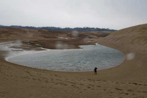 Tottori sand dune would be a prefect place for hiking and nature lovers!