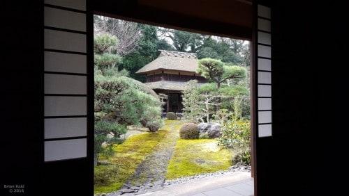 temple,tea,nara,ceremony,matcha,zen,buddhism