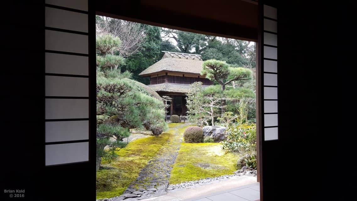 Enjoying a Zen Tea Ceremony in A Temple