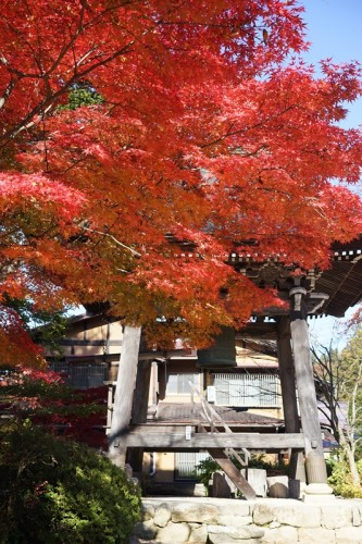 Belfy at Daioji temple, accompanied by autumn colors along a walking course in Takayama