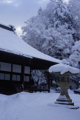Surrounding trees and grounds of a temple in Takayama is heavily caked in snow. This makes walking quite difficult.