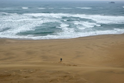 How can we enjoy at Tottori sand dunes? Running down the dunes!