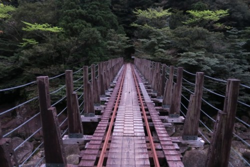 The hiking route, bridge, in Yakushima, Kagoshima, Japan.