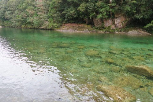 Beautiful river on the way to Jomon Sugi, in Yakushima, Kagoshima, Japan.