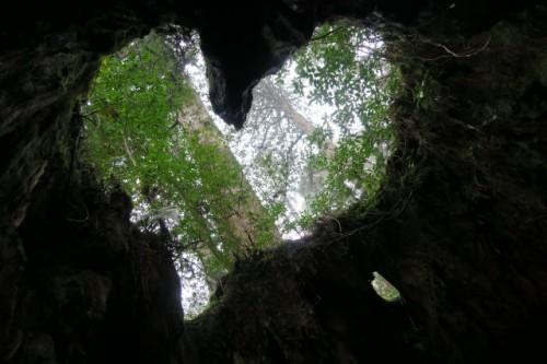 Heart shape in Yakushima, Kagoshima, Japan.