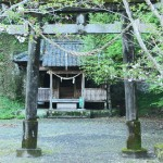 Water Shrine – worshiping nature around Minamikyushu