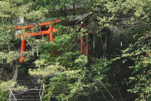 Torii in Waterfall shrine