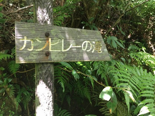 Iriomote Island signs in the jungle