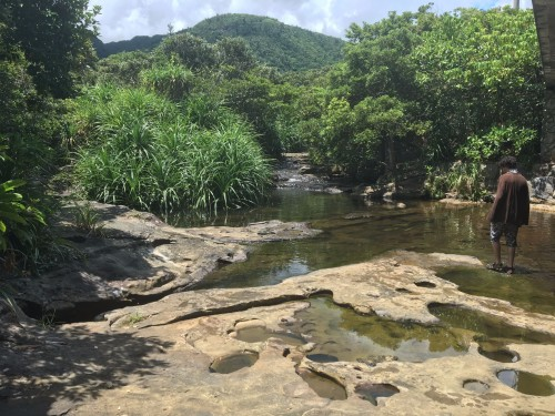 Omisha road park on Iriomote island