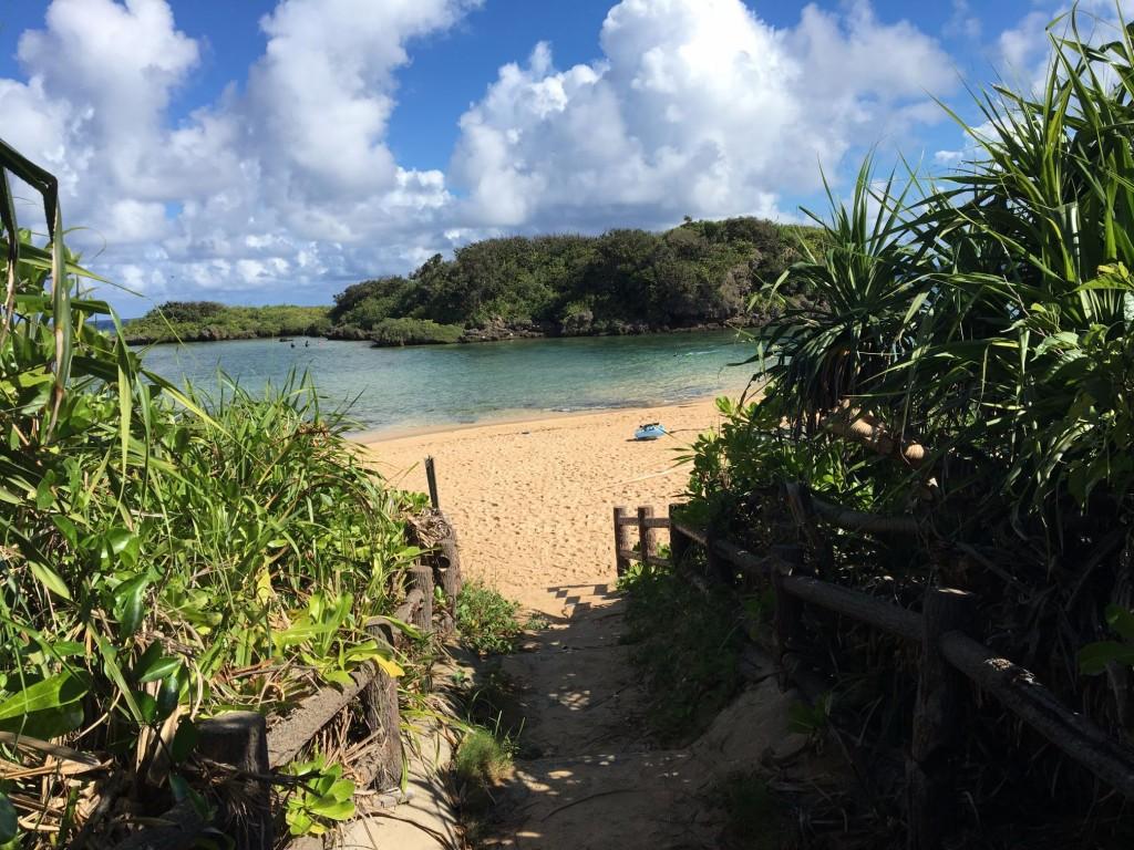 Iriomote Island hoshizuna