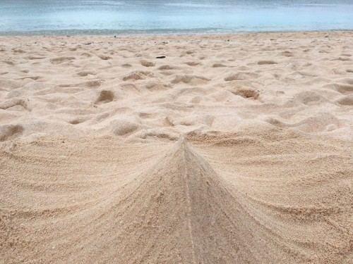 Hateruma Island,Nishihara beach is famous for its sand, which is soft and nice to walk and relax on.
