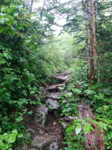 Mount Kisokoma, the trail gets steeper