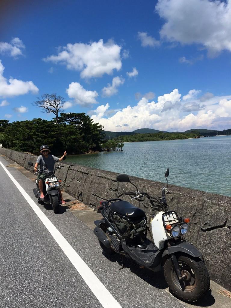 Iriomote Island moped