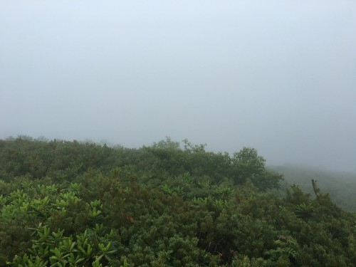 Reaching the summit, this is the view