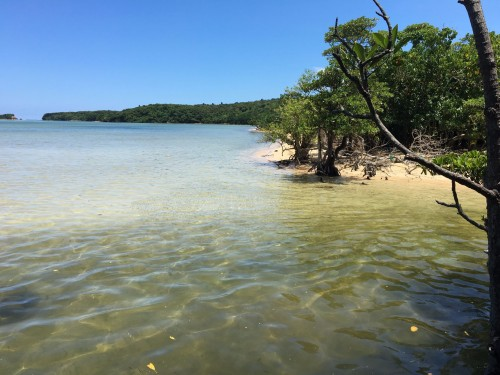 Beach and water on Iriomote Island