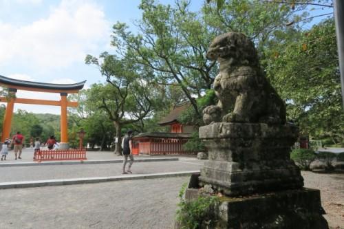 In kunisaki peninsula,this tour firstly brought us to the shrine called yako zinja