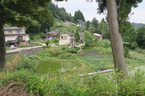 Surroundings around the Farmer's inn in Yamakoshi