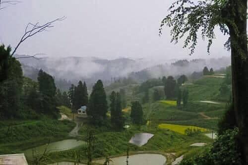 Yamakoshi, a beautiful village in the hear of Niigata