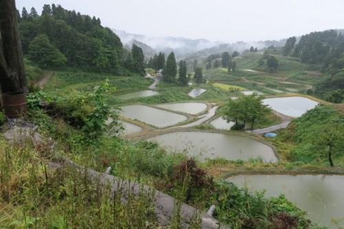 Terraced rice fields in Yamakoshi