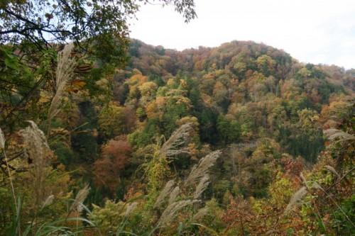 The autumn scenery of Mount Hotaka