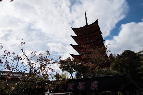 Pagoda-Miyajima-Review-06638