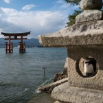 Explore the local food, culture and deer in Miyajima