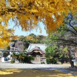 Yugyo-ji, the unknown historical temple of Fujisawa
