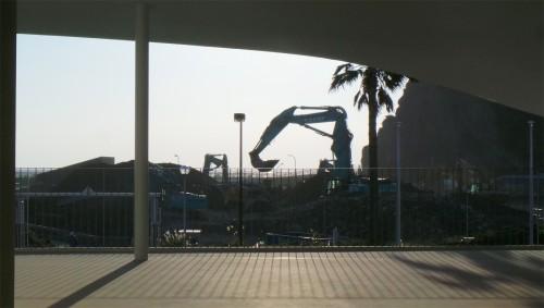 I saw a crane!