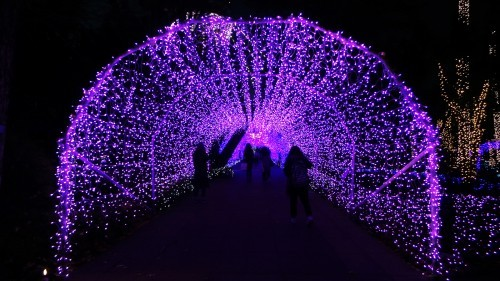 Illumination tunnel