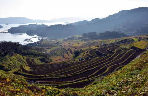 Oura no Tanada, terraced rice field