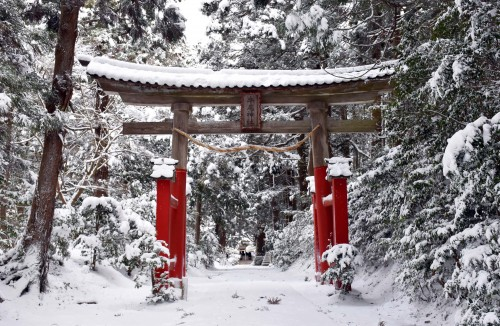 the torii gate of usher shrine in Sado island