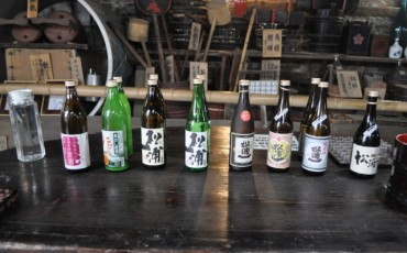 Sake lineup at Matsuura Ichi Shuzo in Saga prefecture