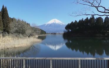 A mount fuji view from Lake Tanuki