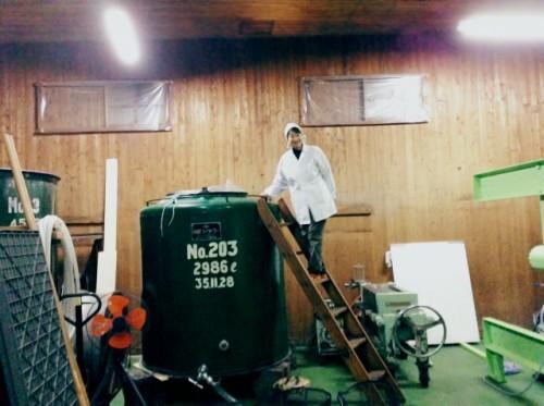 okazaki sake brewery