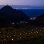 Izu Peninsula: Stroll in Matsuzaki Town and Ishibu Terraced Rice Fields