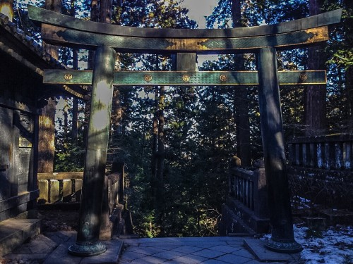 The gorgeous Okumiya torii at the top of many steps