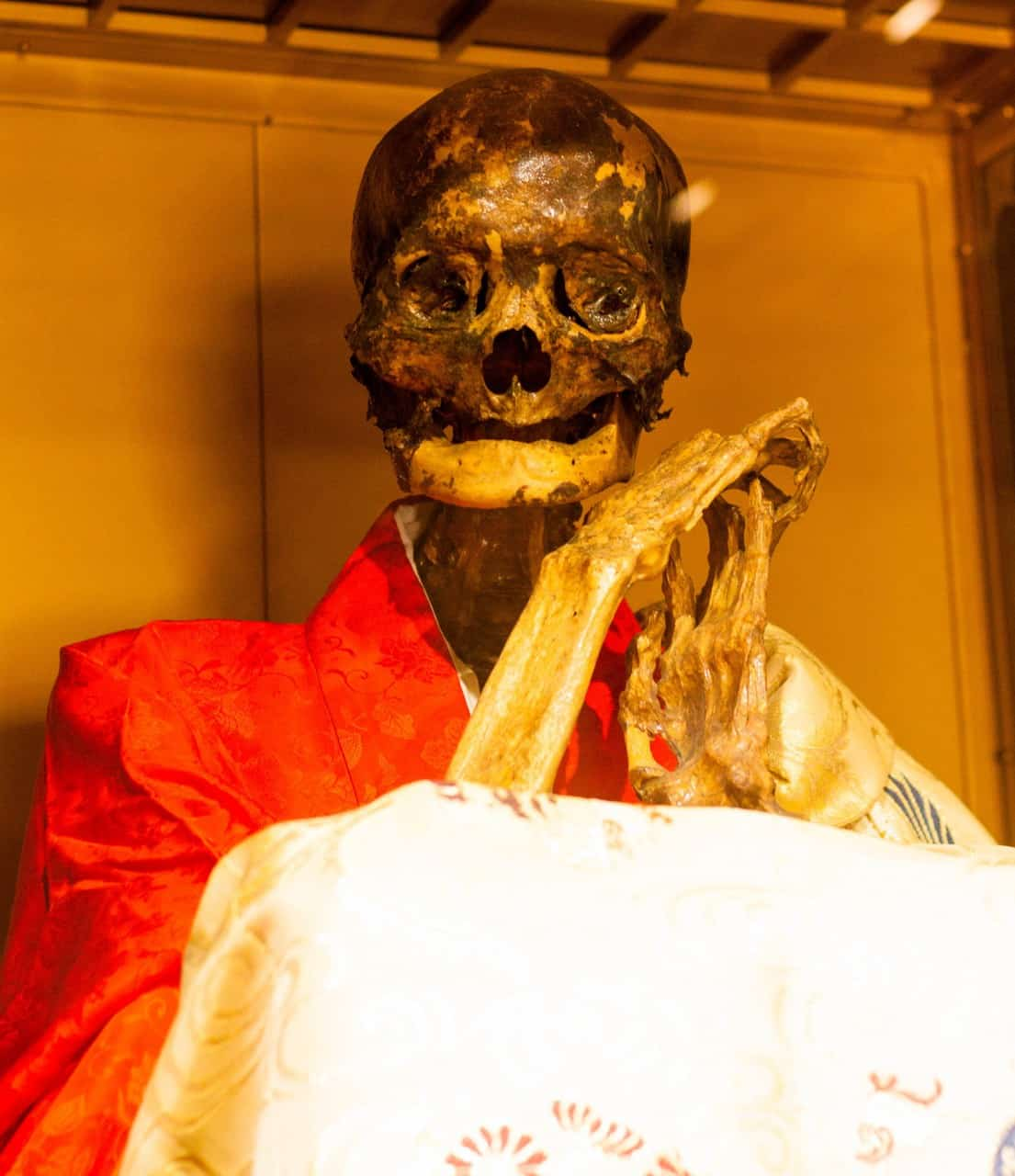 Sokushinbutsu refers to the practice of self-mummification that was followed by a mountainous dwelling sect of Buddhist monks who were called Shugen-do.