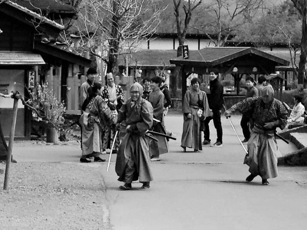 Nikko theme park actors and guests