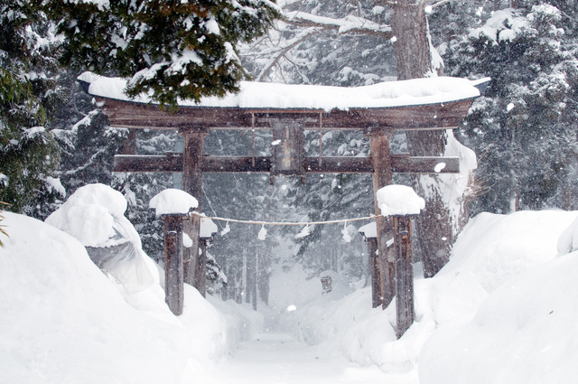 Kosuge Shrine Winter