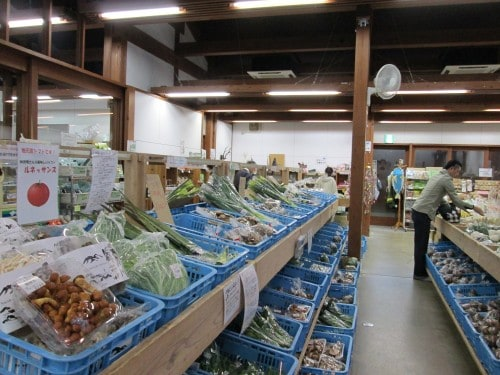 A short time later I came to the Michi no Eki farmer's market. It was chock full of locally grown fruits and vegetables, fresh flowers, local handicrafts, and plenty of other gifts.