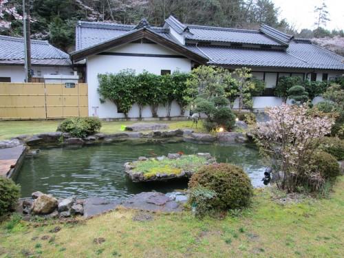 Japanese gardens with koi fish