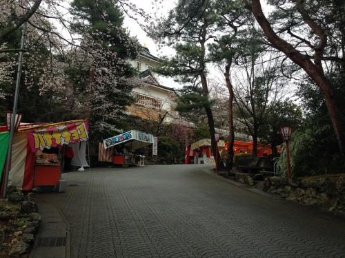 The cherry blossom festival at the castle park in Mino city, Gifu prefecture