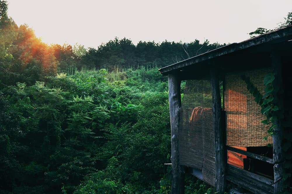 Free room and board in exchange for light housework in Japanese farms.